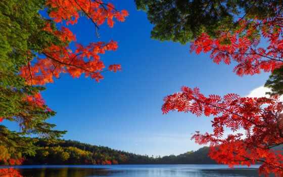 озеро, осень, landscape, природа