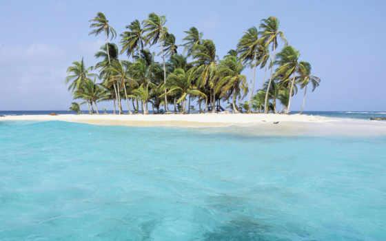остров, пальмы