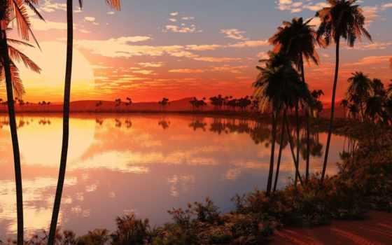 закат, пальмы, природа, графика, красивый, desktop, красивая, панорама,