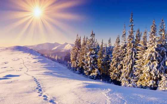 пейзажи -, зимние, дек, восхитительные, добрым, утром, погоду, трудом, переносите, холода, зиму,