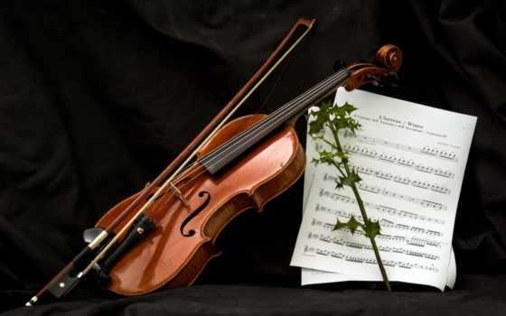 скрипка, нота, музыка