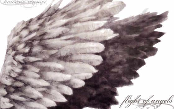 angel, девушка, fantasy