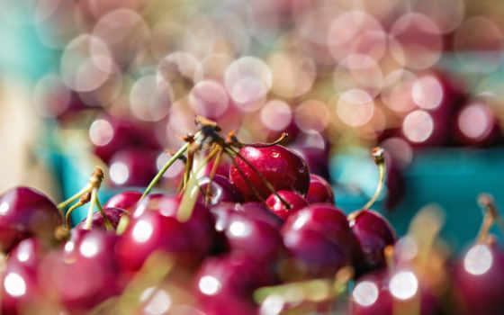 cherry, фрукты, ягоды, черешни, макро, еда, категория, добавил, метки,