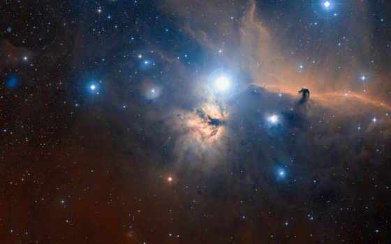 nebula, голова, конская, cosmos, звезды, orion, созвездие, пламя,