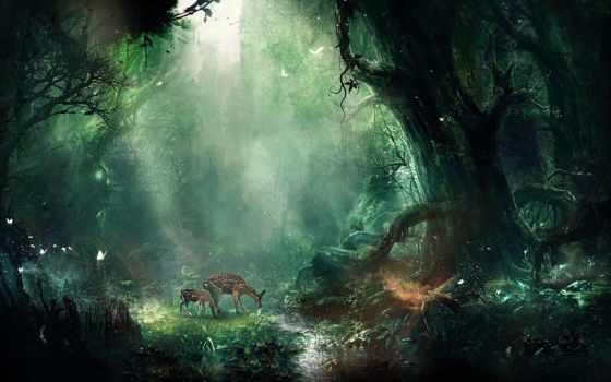 fantasy, ipad, jungle, browse, art,