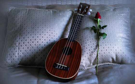 instrument, string, бант, музыка, гитара