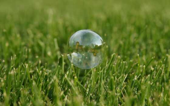 мыло, bubble, трава