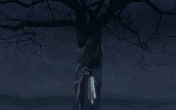centimeters, second, per, аниме, makoto, shinkai, byousoku, night, tags, post, centimetre, that,