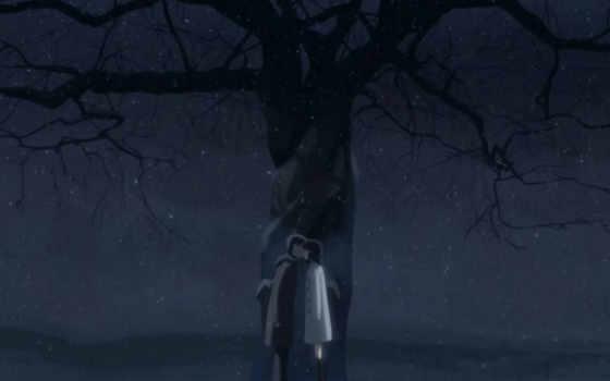 аниме, makoto, shinkai, night, tags, post, second, per, centimeters, byousoku, centimetre,