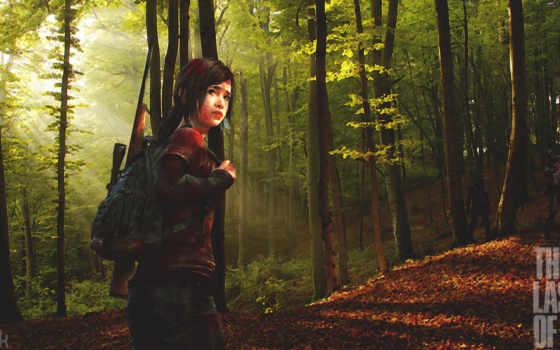 природа, деревья, лучи