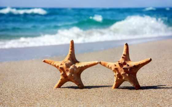 море, пляж, клипарт