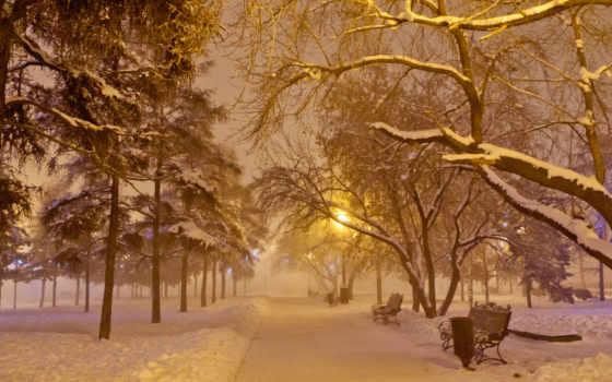снег, дорога, winter, снегопад, lantern, ночь, аллея