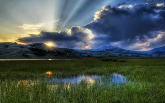 рассвет, со, зеленой, камыши, долиной, заболоченной, утро, озеро, sun,