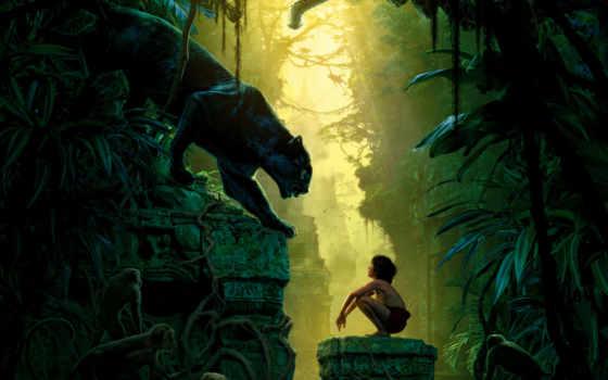 della, giungla, libro