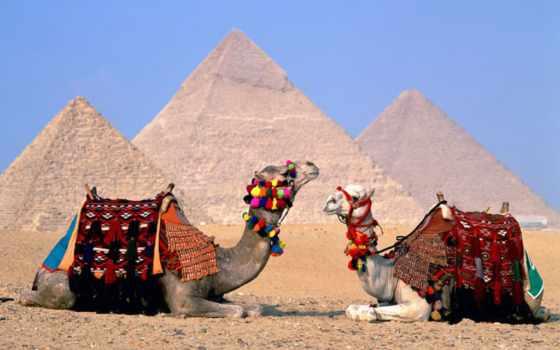 красоты, египет, египте