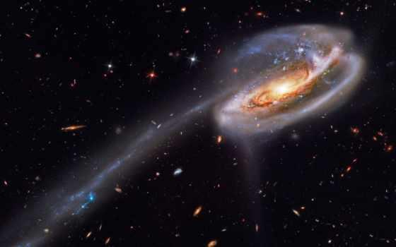 galaxy, the, tadpole, its, tail, star, will, likel