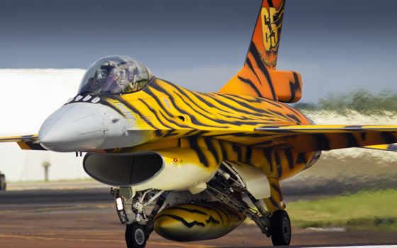 falcon, fighting, dynamics Фон № 129532 разрешение 5120x2880