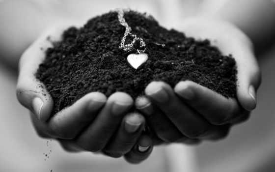 чернозём, цена, гора, почвы, чернозема, доставка, гумусом, природноe, купить,