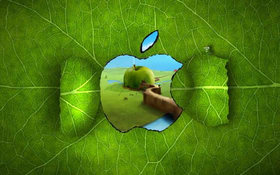 apple, лист, mac, прожилки, зелёный, рисунок, окно,