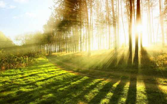 razreshenie, letnii, пейзаж, leto, priroda, ready, высокий, заказ, naturalnyi, фотография, zima