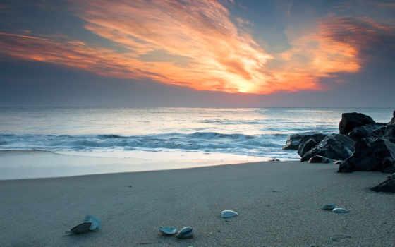 пляж, песок, красивый, море, seashell, берег, красивые, природа, one, камни, click,