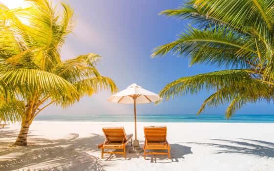 vacation, пляж, праздник, tropical, кресло, summer
