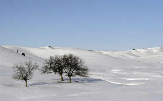 снег, winter, scenes