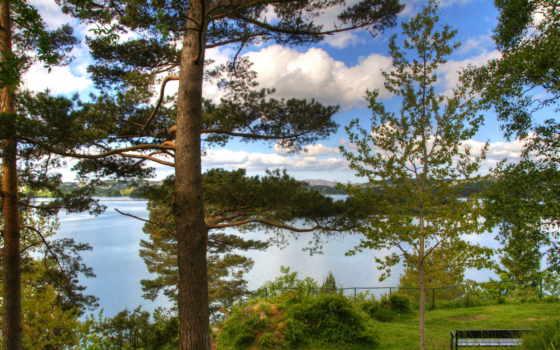 bergen, норвегия, природа, горы, reki, картинка, figaro,