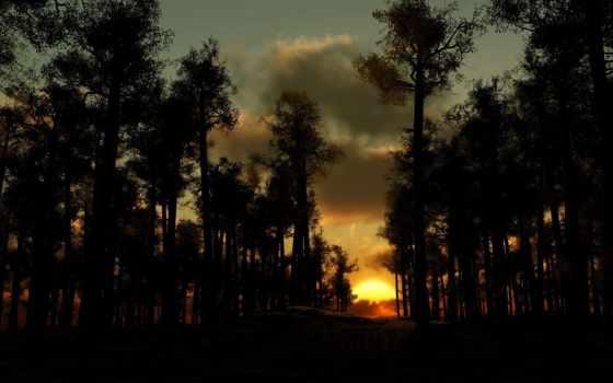 закат, лес, солнца, вечер, тучи, trees, rising,