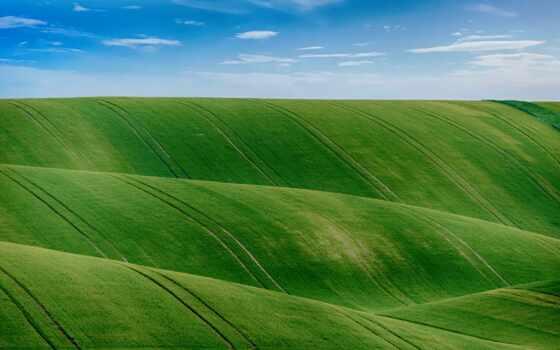 поле, russian, reverso