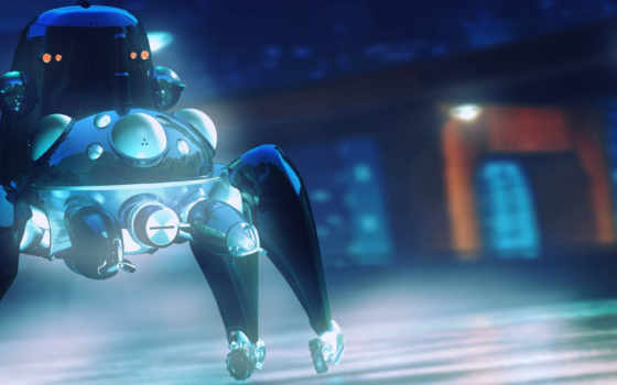 ghost, shell