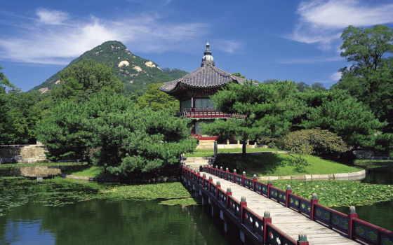 korea, сеул, treatment, south, korean,