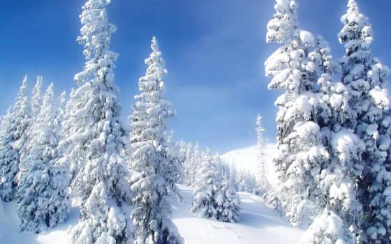 зима, снег Фон № 4493 разрешение 1920x1080