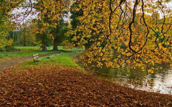 осень, amazing, скамейка, desktop, здравствуй,