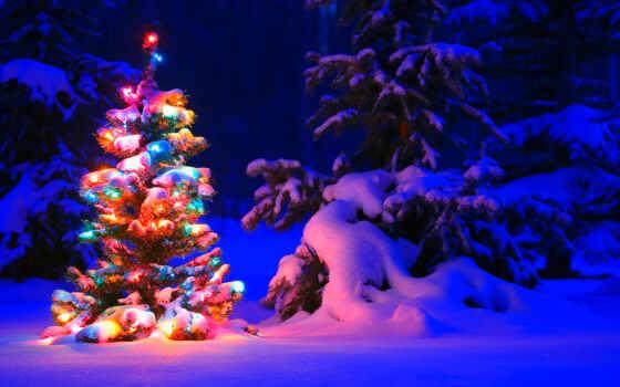 новогодние, дек, красивые, торрент, рождественские, winter, волшебно, без,
