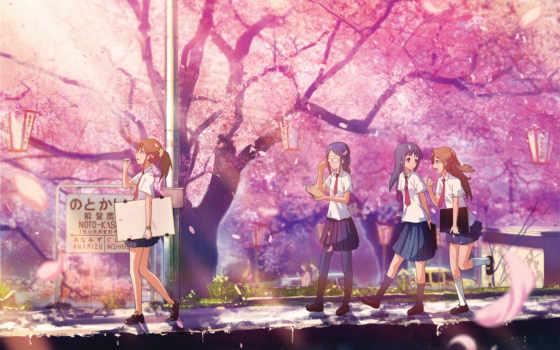 cherry, blossom, Сакура, цветущая, школьницы, японии, розовые,