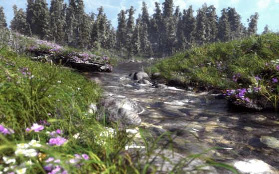 трава, цветы, скалы