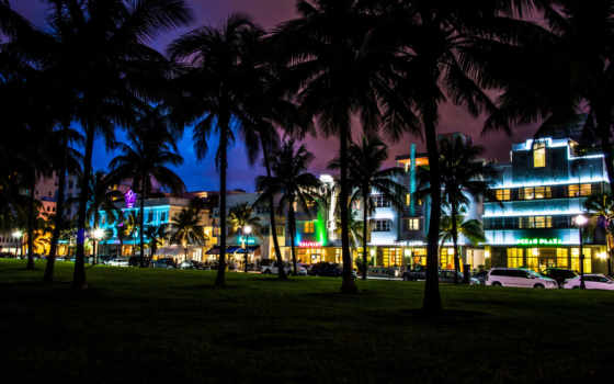 miami, florida, ночь, пляж, города, пальмы,
