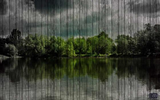 озеро, лес, природа