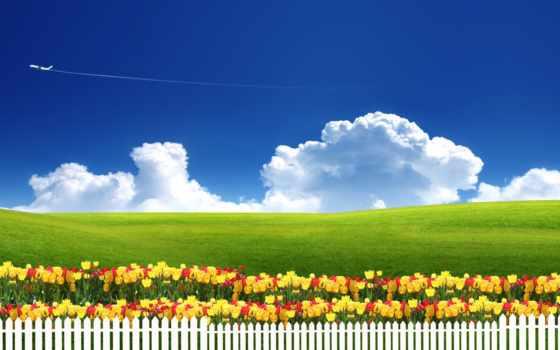 природа, cvety, небо, трава, забор, тюльпаны, freedom, cosmos, art, луг,