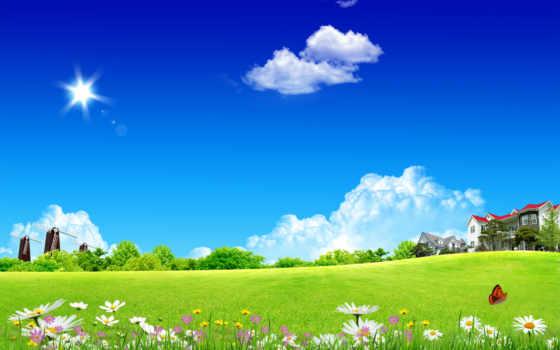 природа, flowers, desktop