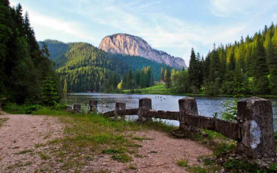 лес, гора, горы, птичий, ворошить, игры, ultra, уровни,
