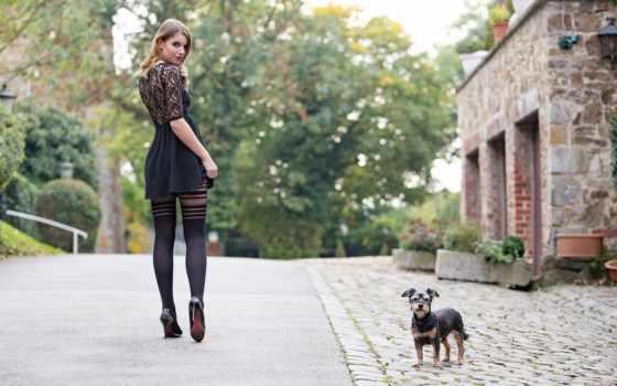 девушка, собака, улица, город, теме, stoehr, настроение, нояб, гюнтер, коллекция,