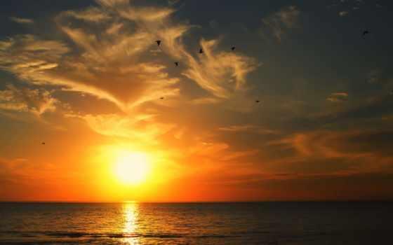 восход, хороший, утро, best, him,