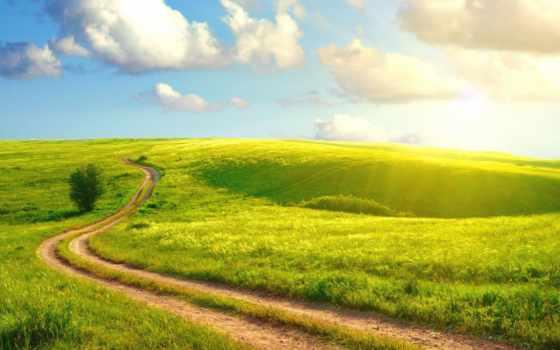 summer, дорога, природа, трава, поле, коллекция, sunshine,