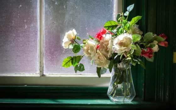 flowers, ваза, картинка, cvety, окно, цветы,