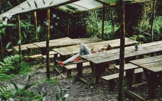 mujer, gafa, сол, relajarse, bosque, public, прыжок, день, domain, hoja