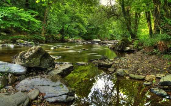 природа, exmoor, шаги, ук, река, тарр, landscape, halzen, trees, страница,