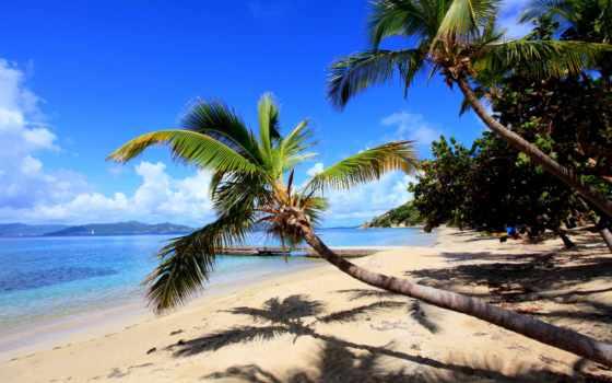 пляжи, tropical, тропические, темы, пляж, рай, бабочек, море, windows,