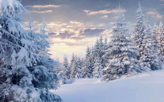 снег, zima, пейзаж